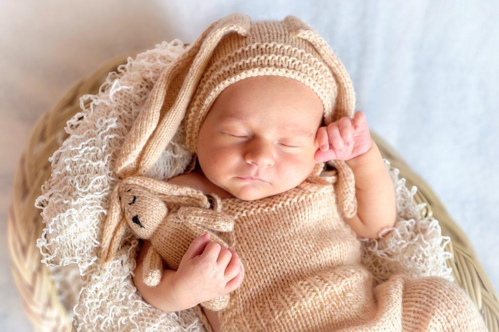 新生児 うさぎ
